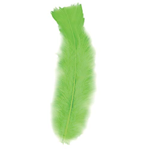WIDMANN 0505G 50 Federn Unisex– Erwachsene Grün One Size