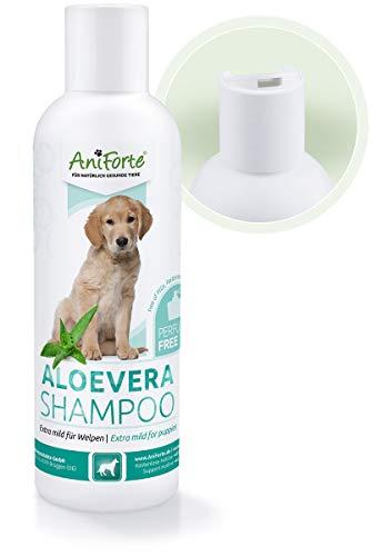AniForte Aloe Vera Welpen Shampoo mild 200ml, Hundeshampoo, parfümfrei, Naturprodukt Shampoo speziell für Welpen, Junghunde und empfindliche Hunde, sorgt für glänzendes und leicht kämmbares Fell -