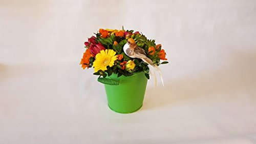"Frühlingsgesteck\""Gartengruß\""- Frühlingsblumen aus dem Garten Blumenpreis 40 Euro"
