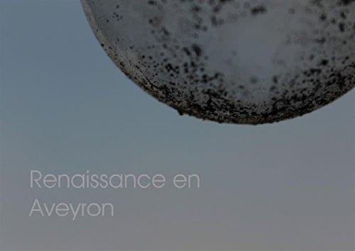 Renaissance en Aveyron (Livre poster DIN A4 horizontal): Reportage photographique sur un chantier...