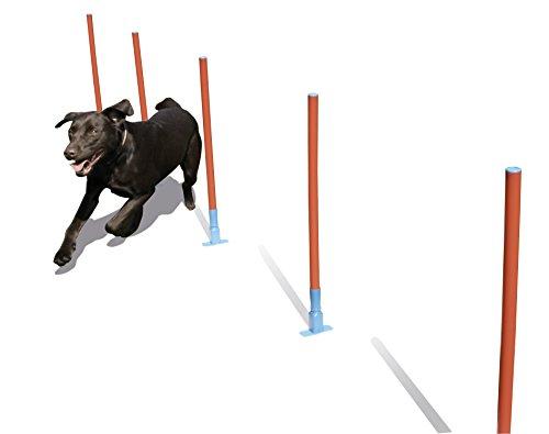 Rosewood 02490 Agility-Slalomstangen für Hunde