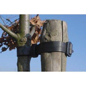 garden-tree-buckle-ties-60cm-pack-of-25-a321