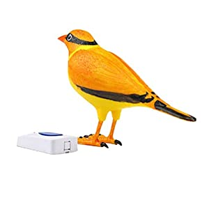 Pandiki Einzigartige Design-Wireless Digital Jingle Bell Klar Simulation Vogel Haus Türklingel, Simulation Ton…