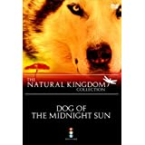 Natural Kingdom: Dog of the Midnight Sun