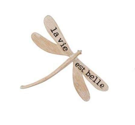 LES JARDIN D\'ULYSSE - Decoración de Pared con diseño de libélula, tamaño pequeño