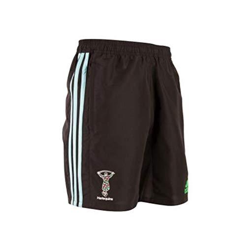 adidas Herren Harlequins Woven Shorts 1/2, Punjab, M Adidas Warm Ups