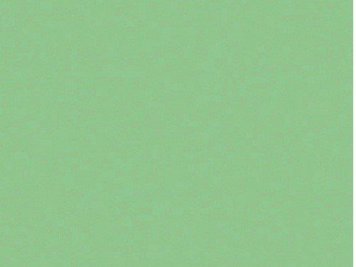 Verzierwachsplatte pastellgrün, 20 x 10 x 0,05 cm, 2 Stück