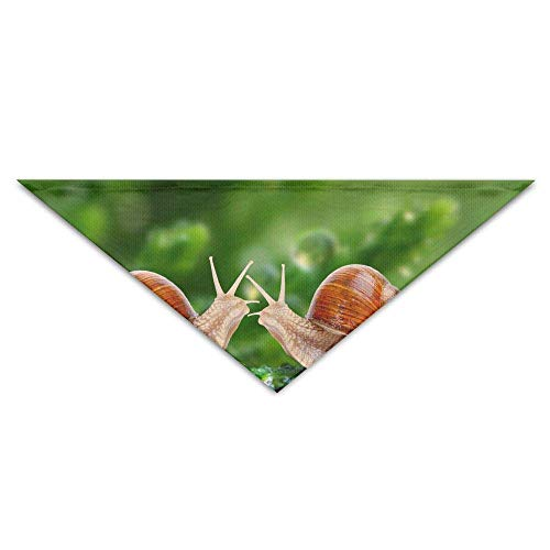 deyhfef Two Snails Next to Dew Pet Dog Cat Puppy Bandana Triangle Head Scarfs Accessories