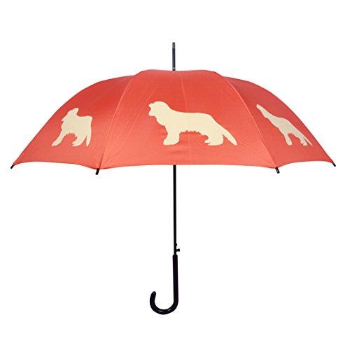San Francisco Umbrella Company Regenschirm mit Motiv: Cavalier King Charles Spaniel –Beige auf Rot (Spaniel Regenschirm)