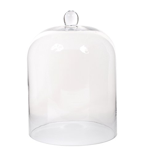 MICA Decorations Amelie Cloche, Verre, Transparent, 24,5 x 24,5 x 35 cm