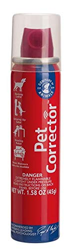 Company of Animals Pet Corrector, 50 ml - Gesicht Korrektor