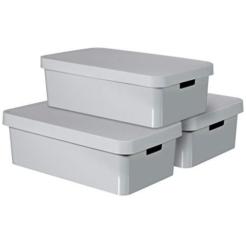 CURVER Infinity Aufbewahrungsboxen mit Deckel, Kunststoff, Hellgrau, 30 Liter