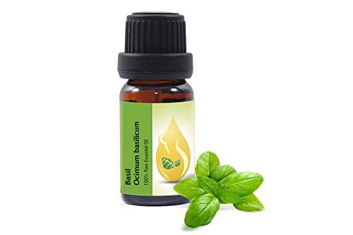 Basilikum (Ocimum basilicum) - 100% naturreines, ätherisches Öl 10ml