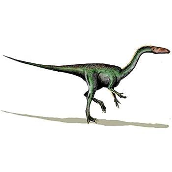 54b6b686727314 Autocollant sticker dinosaure dino jurassique deco enfant chambre segisaurus