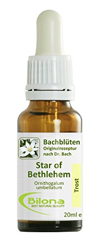 Joy Bachblüten, Essenz Nr. 29: Star of Bethlehem; 20ml Stockbottle