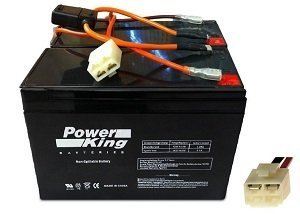 Razor Pocket Rocket High Performance Batteries Includes Battery Wiring Harness Versions 9-15+ by Beiter DC Power