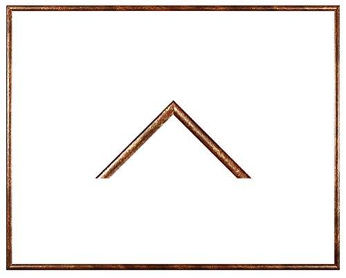 Iowa Kunststoff-Bilderrahmen 28x60 cm Posterrahmen 60x28 cm Farbwahl jetzt: Terra Gold mit 1 mm Antireflex Acryglas