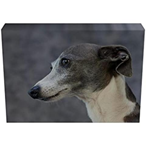 Italian Greyhound DOG Stampa su tela con cornice, 38 mm 2102 _143, nero, 24 X (Greyhound Dog Stampa)