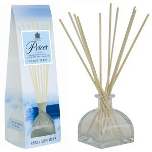 reed-diffuser-ocean-spray-100ml-homewares