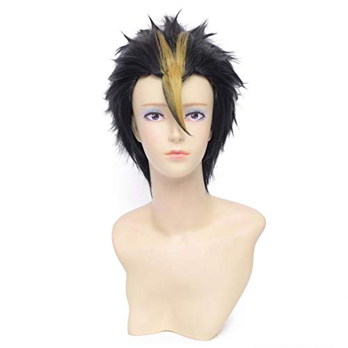 cm schwarz gerade kurze Männer synthetische volle Cosplay Kostüm Anime Perücke (30cm-schwarz) ()