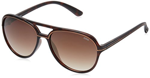 IDEE Aviator Sunglasses (IDS1948C6SG|58|Demi Brown ) image