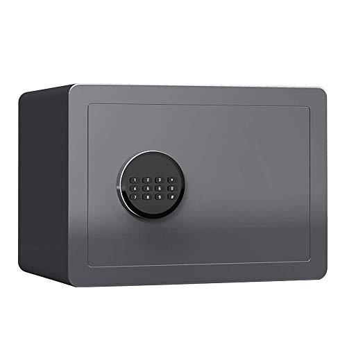 DaQingYuntur Caja de Efectivo de Seguridad de código Digital, Hogar pequeño de...
