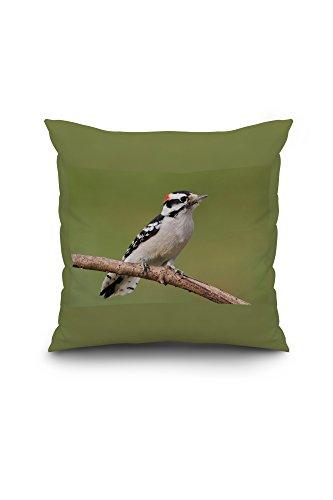 downy-woodpecker-18x18-spun-polyester-pillow-case-custom-border