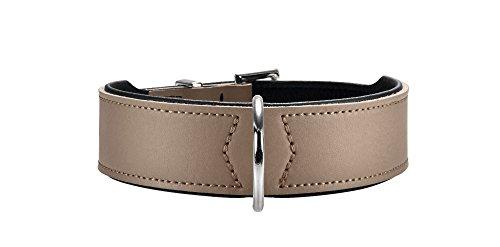 HUNTER BASIC Halsband für Hunde, beschichtetes Spaltleder, Kunstleder, schlicht, robust, witterungsbeständig, 50, stein -