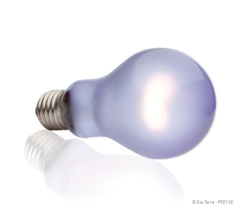 Exo Terra A21 PT2112 Daytime Heat Lamp, 100 Watt 2