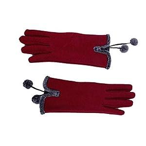 RFGHATG Damenhandschuhe Winter Warme Allfingerhand Ski Winddichte Handschuhe Warme Handhandschuhe