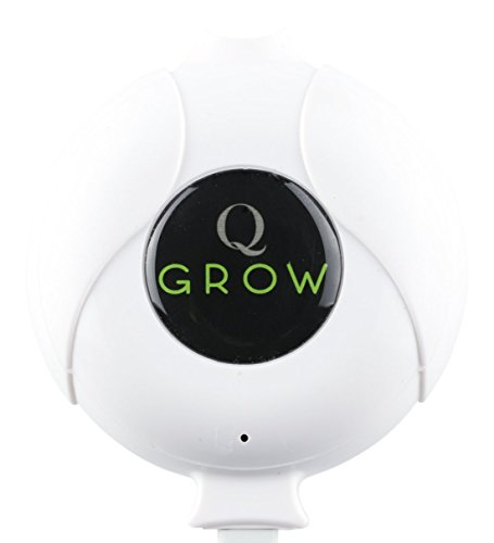 Q-Grow Easy Breeze leise Luftpumpe Aquarium, Aquarienluftpumpe, Membranpumpe inkl. Air Stone und Schlauch