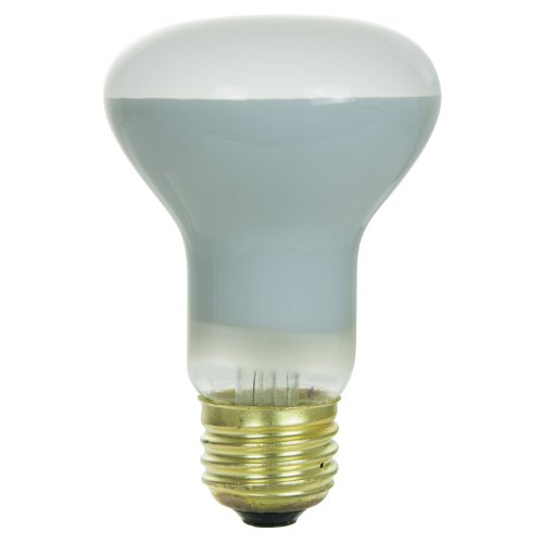 Sunlite R20/FL Incandescent 45-watt, medium Based, R20 reflector Bulb, Frost