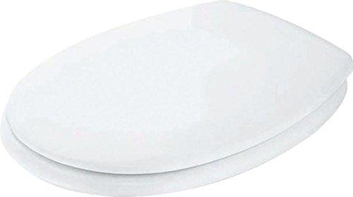 Ideal Standard WC-Sitz Eurovit Scharniere aus Edelstahl, K705301 (Standard Toilette)