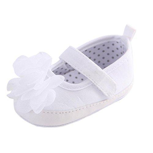 Koly_Scarpe Neonato Fiore Morbida Suola Antiscivolo Bambino Jean Sneakers (SIZE13, Bianca)