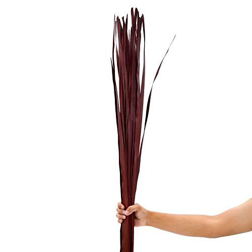 Leewadee Dekobündel für Bodenvasen Trockengesteck Dekogras Dekozweige, 120 cm, Palmblatt, braun