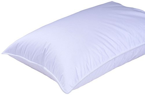 Highland Feather Manufacturing 16-Ounce Bordeau by European Down Pillow, Standard, White by Highland Feather Manufacturing Inc