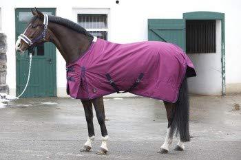 PFIFF 101671 Pferde Ganzjahres Decke, Weidedecke Pferdedecke Regendecke, Bordeaux / Rot 125 cm