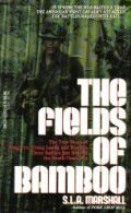 the-fields-of-bamboo-dong-tre-trung-luong-and-hoa-hoi-three-battles-just-beyond-the-south-china-sea-