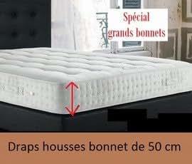 Bonnet de 50 cm coton 57 fils Drap housse 100x200 uni prune