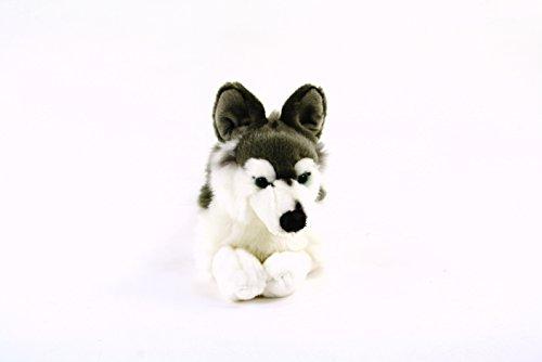 Preisvergleich Produktbild Uni-Toys Husky,  38 cm,  grau / weiß,  Plüschtier,  Kuscheltier,  Stoffhund,  dog