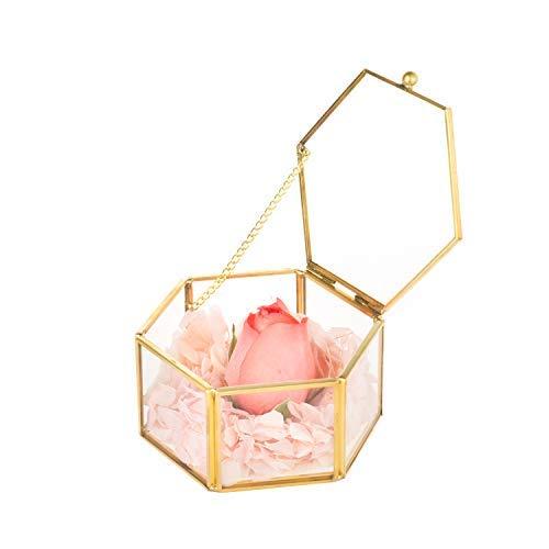 Feyarl Schmuckschatulle Glas Terrarium Box Pflanzenbehälter Geometrisch Deko Glas Blumen Topf (Gold)