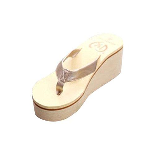 Chanclas Mujer, Ba Zha Hei Mujeres Vacaciones de Zapatos de Playa...