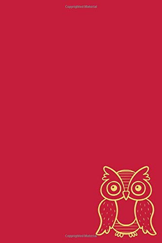 Notebook: Owl Cardinal and Straw Designer College Ruled Lined Blank Notebook Journal Notepad