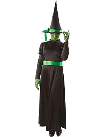 Costumes Ladies Fancy Dress - Ladies Green Wicked Witch Halloween Book Fancy