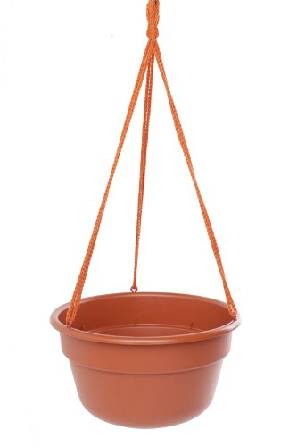 bloem-dchb12-46-3048-cm-dura-cotta-hanging-basket-terra-cotta