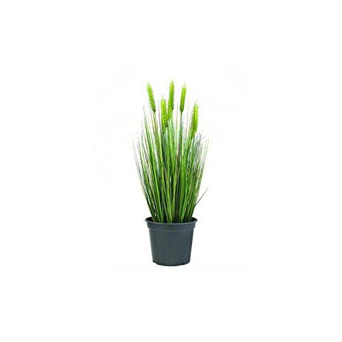 Set 2 x di Grano decorativo di inizio estate con 30 ciuffi d'erba, 60 cm - 2 pezzi di Pianta artificiale in vaso / Pianta ornamentale - artplants