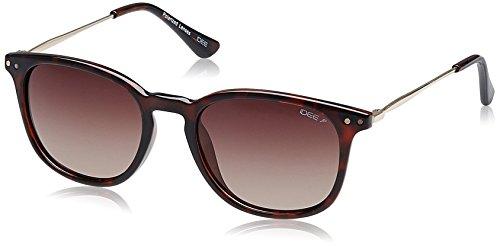 IDEE Gradient Square Unisex Sunglasses - (IDS2071C6PSG|51|Brown Gradient Polarized lens) image
