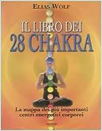 Il libro dei 28 chakra. La mappa dei più importanti centri
