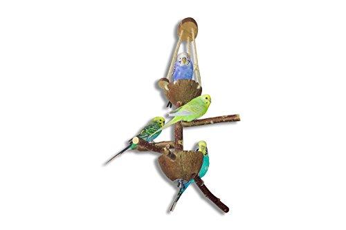 Kokos Vogelspielplatz mit Futternapf und Naturholz-Sitzstangen zum Aufhängen