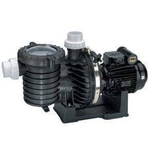 Pumpe Pool sta-rite 5P6R Wasser Saline 1,5CV Mono 22m3/h (Pumpe Sta-rite)